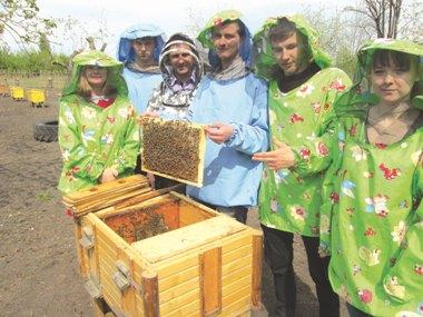 Хижацька арифметика,  або Хто ж має посприяти трудязі-бджоляру?